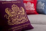 Президент предлагает лишать украинского гражданства лиц с двойным гражданством
