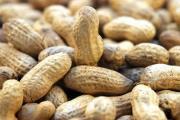 Учёные создали гипоаллергенный арахис