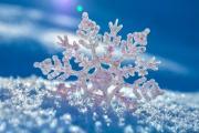 Киев побил 31 температурный рекорд за зиму