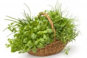 Зелень поможет похудеть