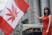 Канада может легализовать марихуану