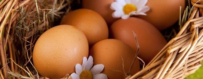 Яйцо в некоторых культурах является символом бессмертия